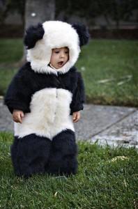 SEO панда
